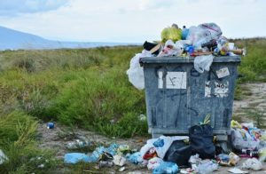 Overflowing bins are basic point of spreading diseases