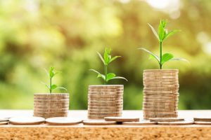Vermicomposting Vs Composting Economy
